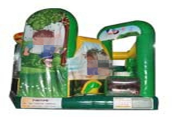 Go Diego Go 5 in 1 jumping house