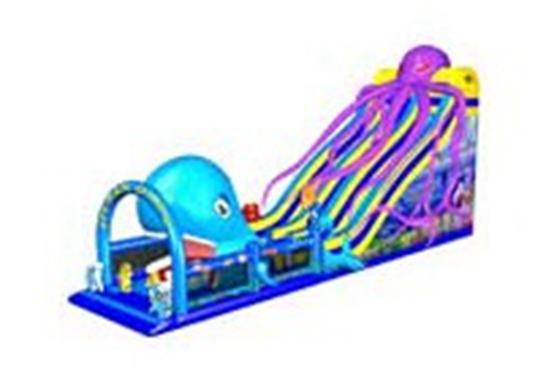 Octopus & Whale Combined Water Slide