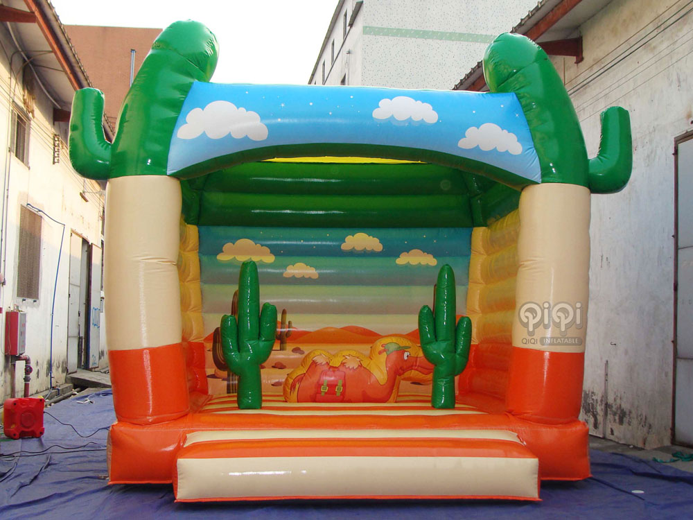 Inflatable Desert Jumping House